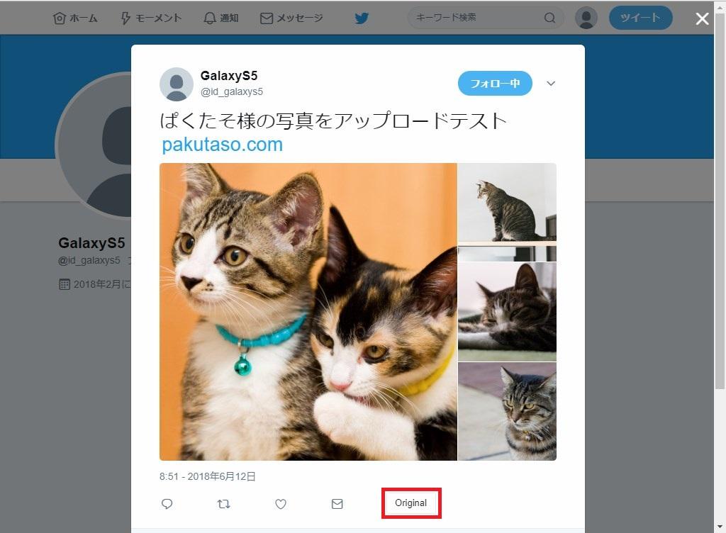 Web版Twitter_画像表示5_Original