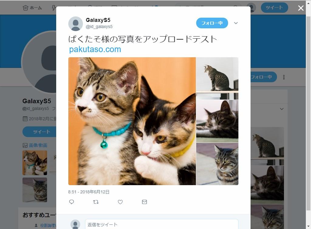 Web版Twitter_画像表示