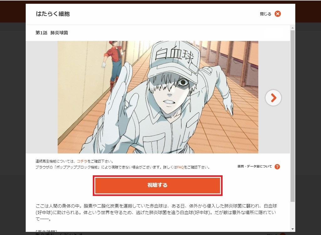 Web版dアニメストア_はたらく細胞_第1話