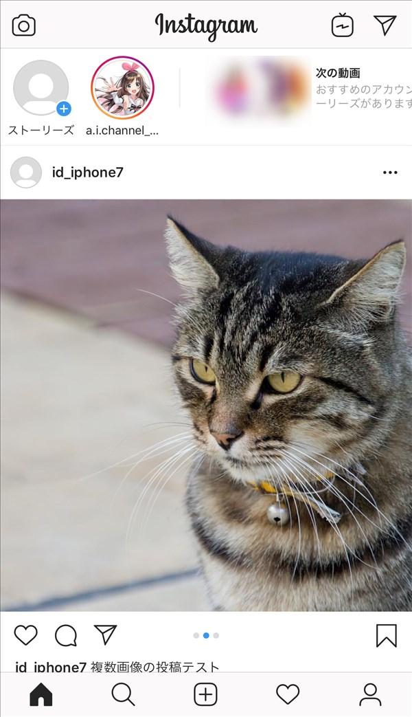 Instagram_フィード_写真2枚目