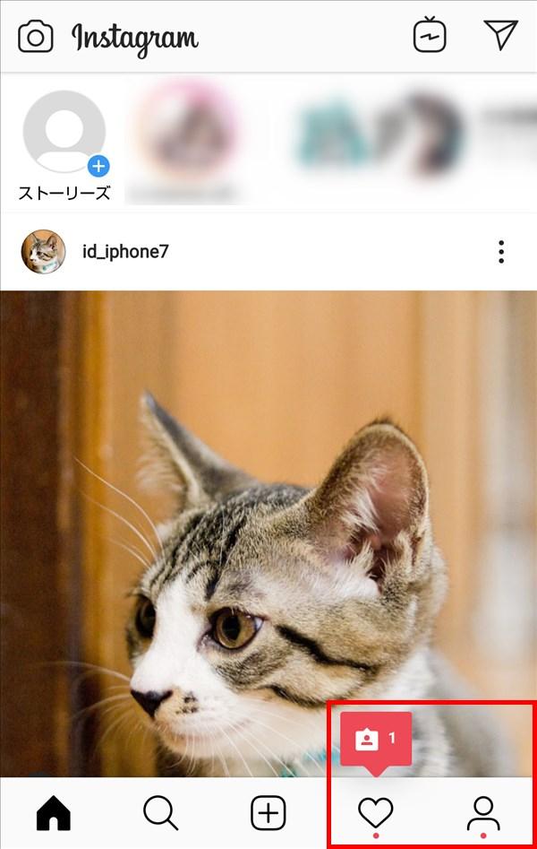 Android版インスタグラム_ホーム_アクティビティ_通知