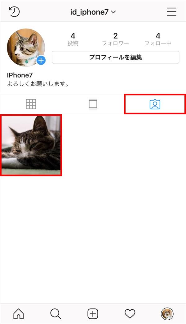 インスタグラム_プロフィール_あなたが写っている写真と動画