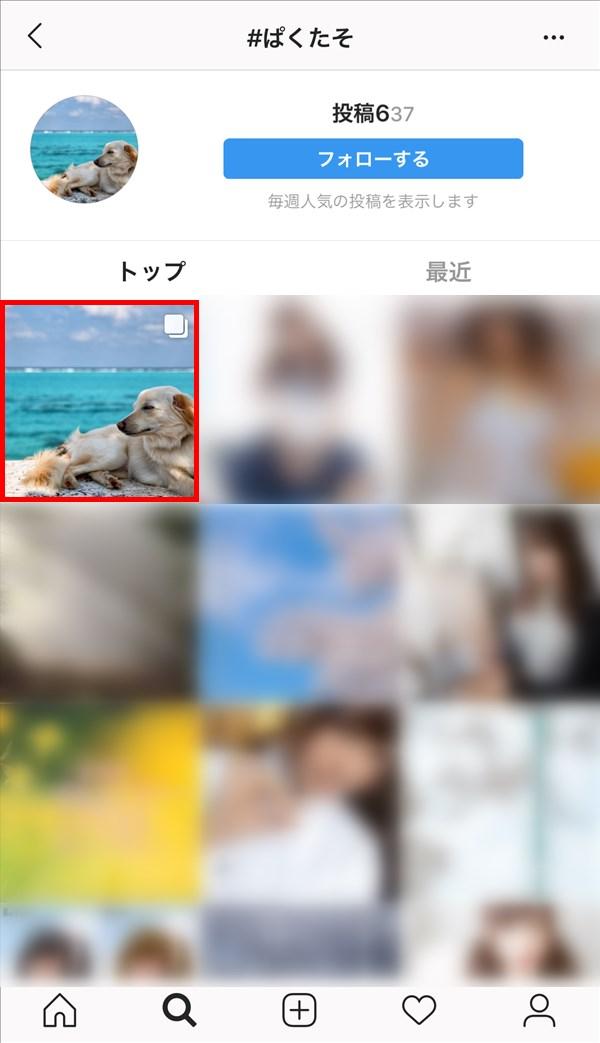 Instagram_検索_ぱくたそ