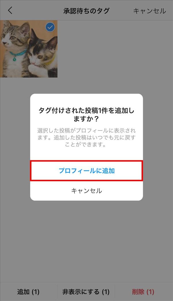 iOS版Instagram_タグ付けされた投稿~件を追加しますか?