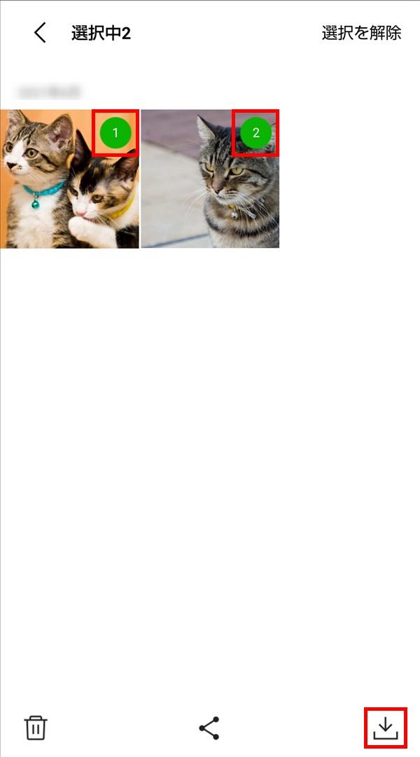 Android版LINE_写真_動画_猫_複数保存