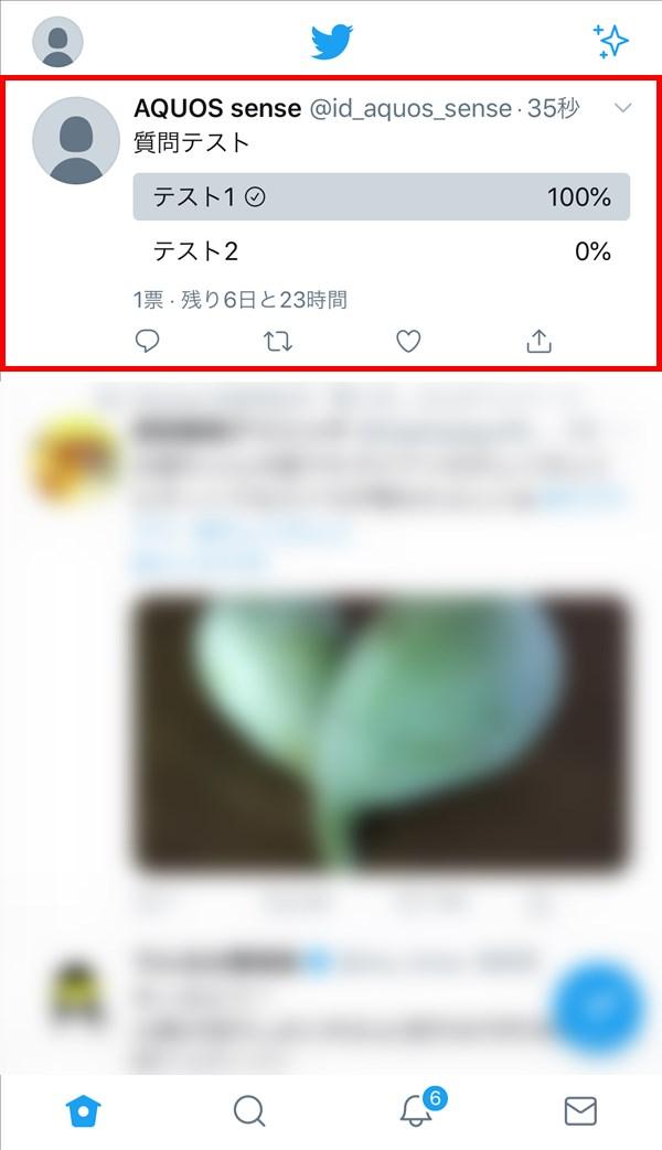 iOS版Twitter_投票_回答反映