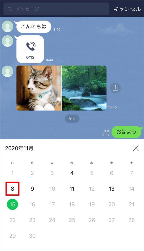 iOS版LINE_トークルーム_検索_カレンダー_日付